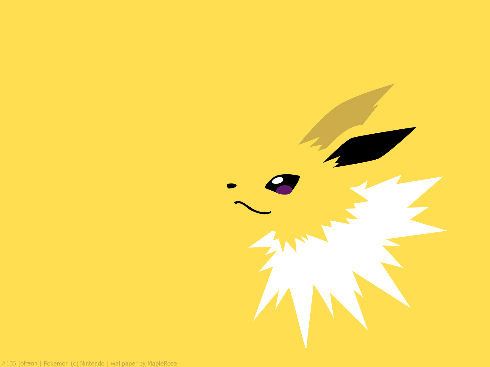 jolteon wallpaper