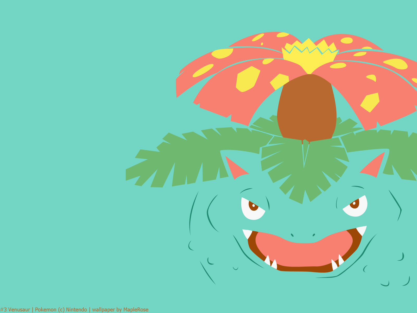 Venusaur  the Seed Pok  233 mon  Venusaur uses its large petals to capture    Venusaur Wallpaper