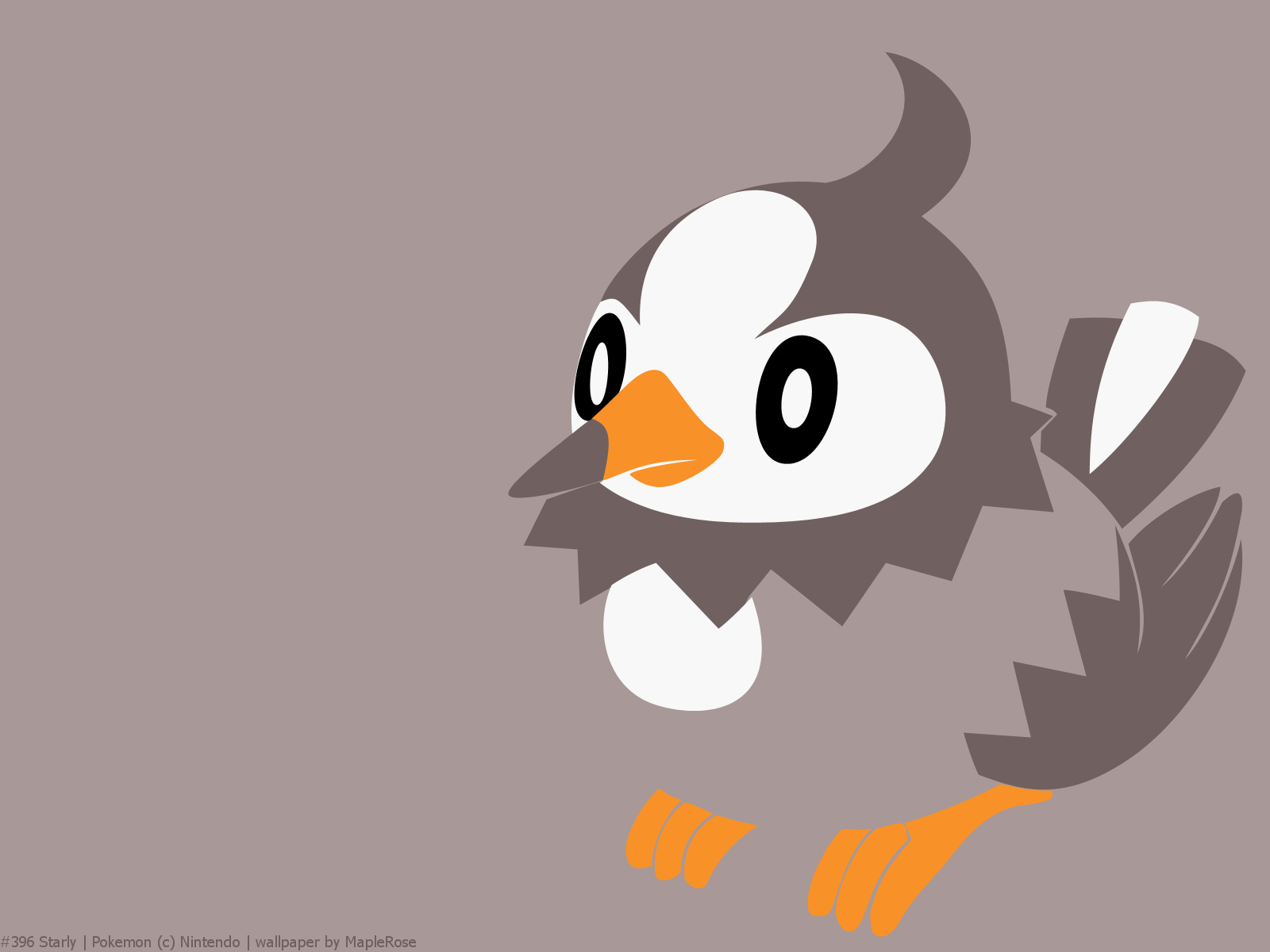 Starly Images   Pokemon Images