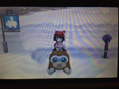 Teehee riding Mamoswine, even if it's rather tiny by scale